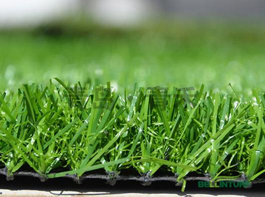 幼儿园加密绿草